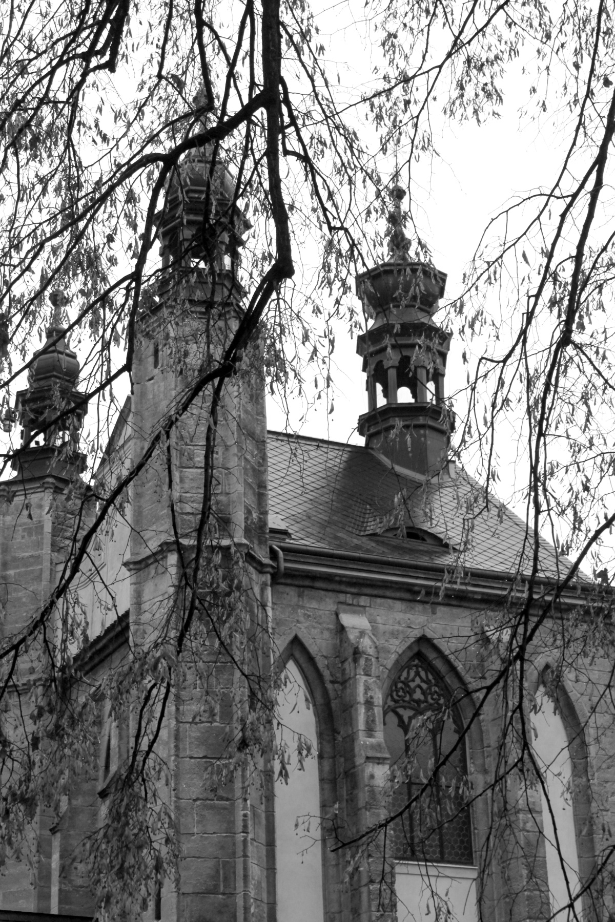 Sedlec Ossuary Through the Trees