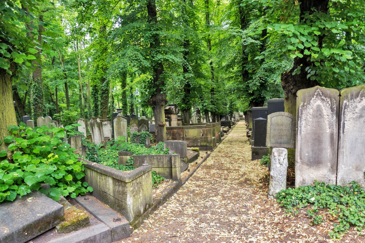 Jüdisches Friedhof Schönhauser Allee