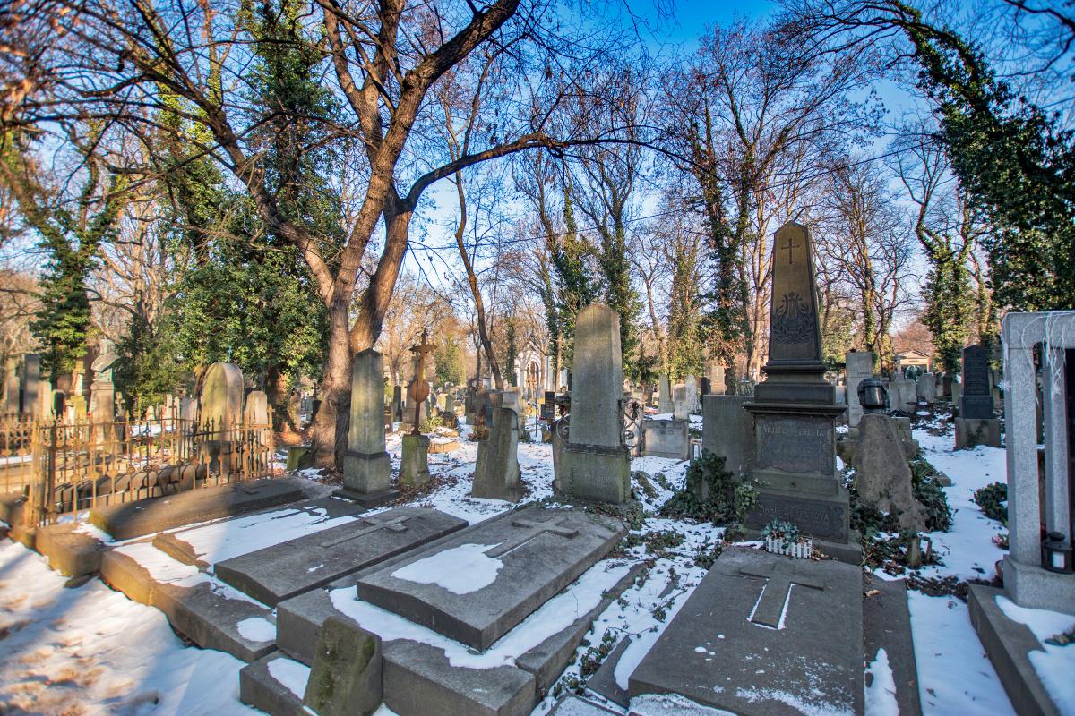 Snowy Gravestones