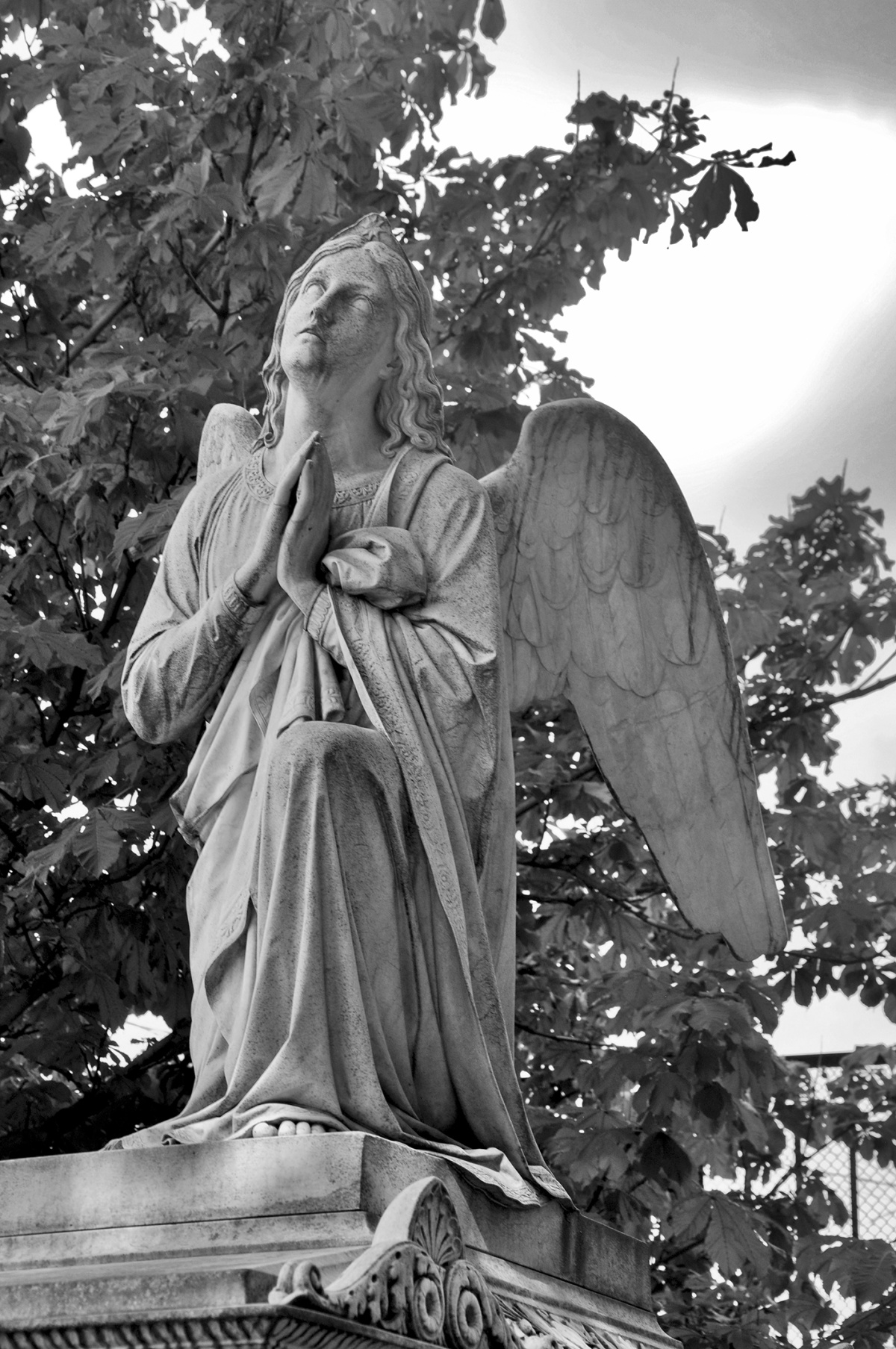 Angel in Black and White