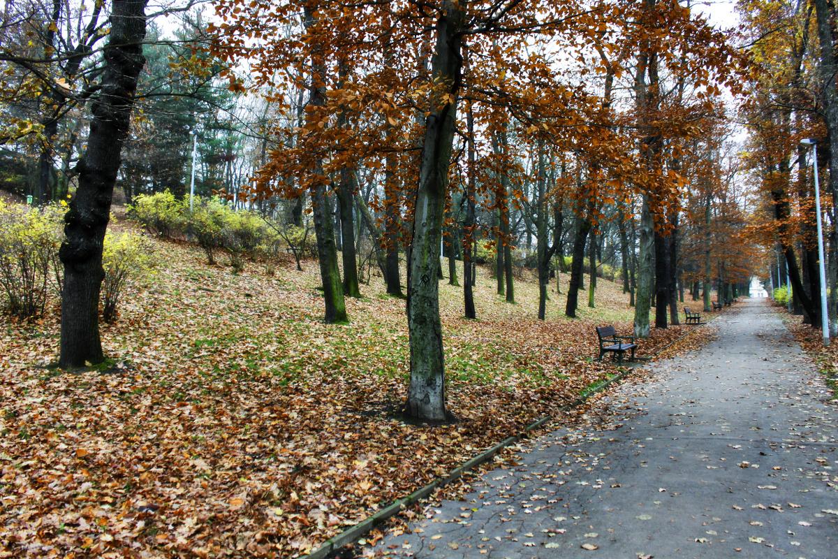 Autumn in Santoške