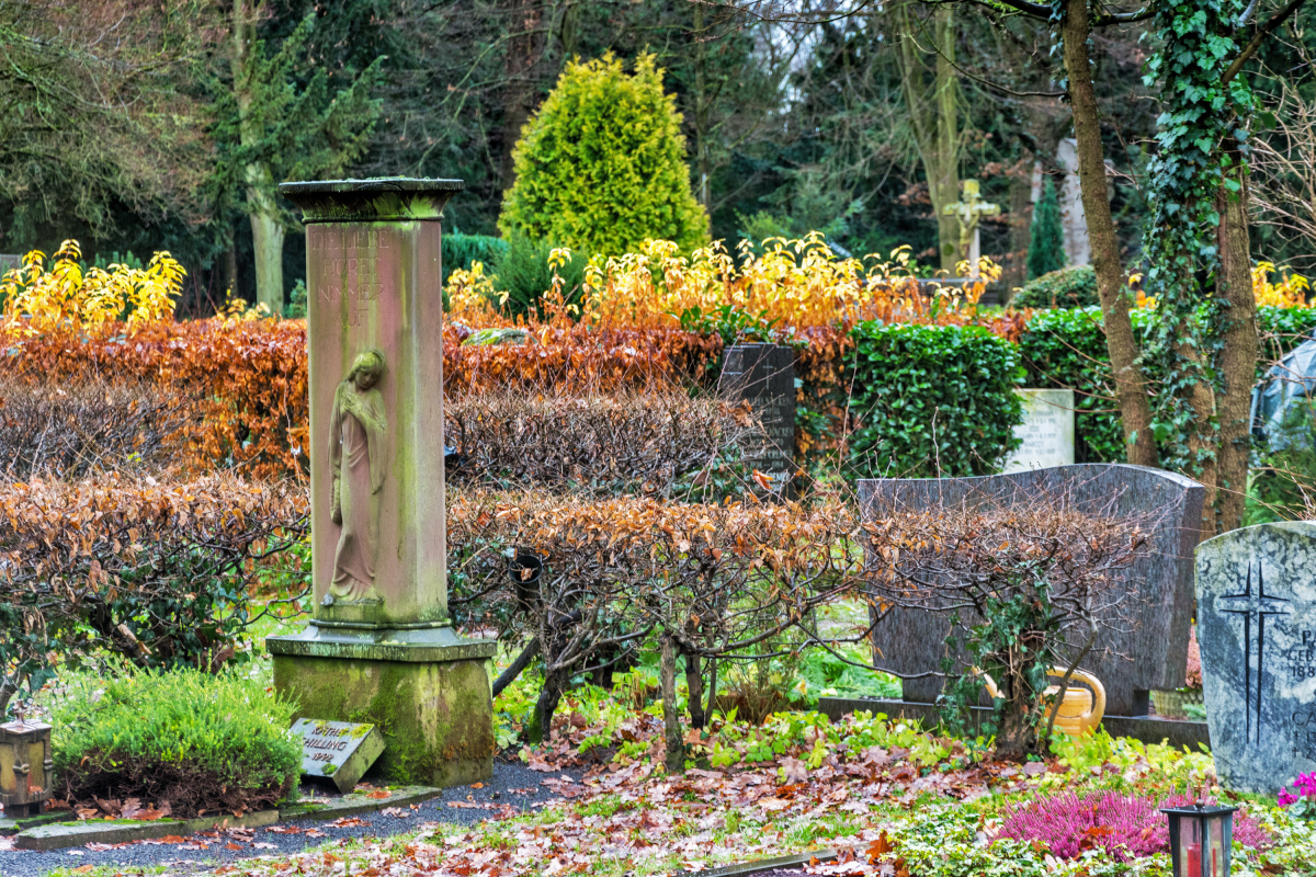Autumn Hedges