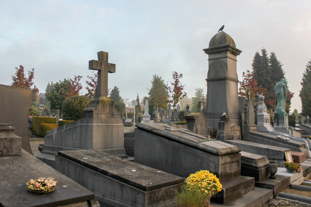 Raven in Ixelles Cemetery