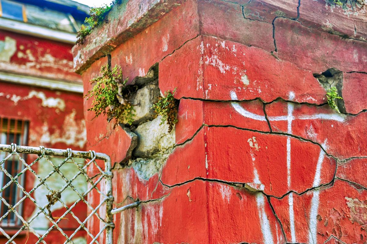 Broken Brick Garden