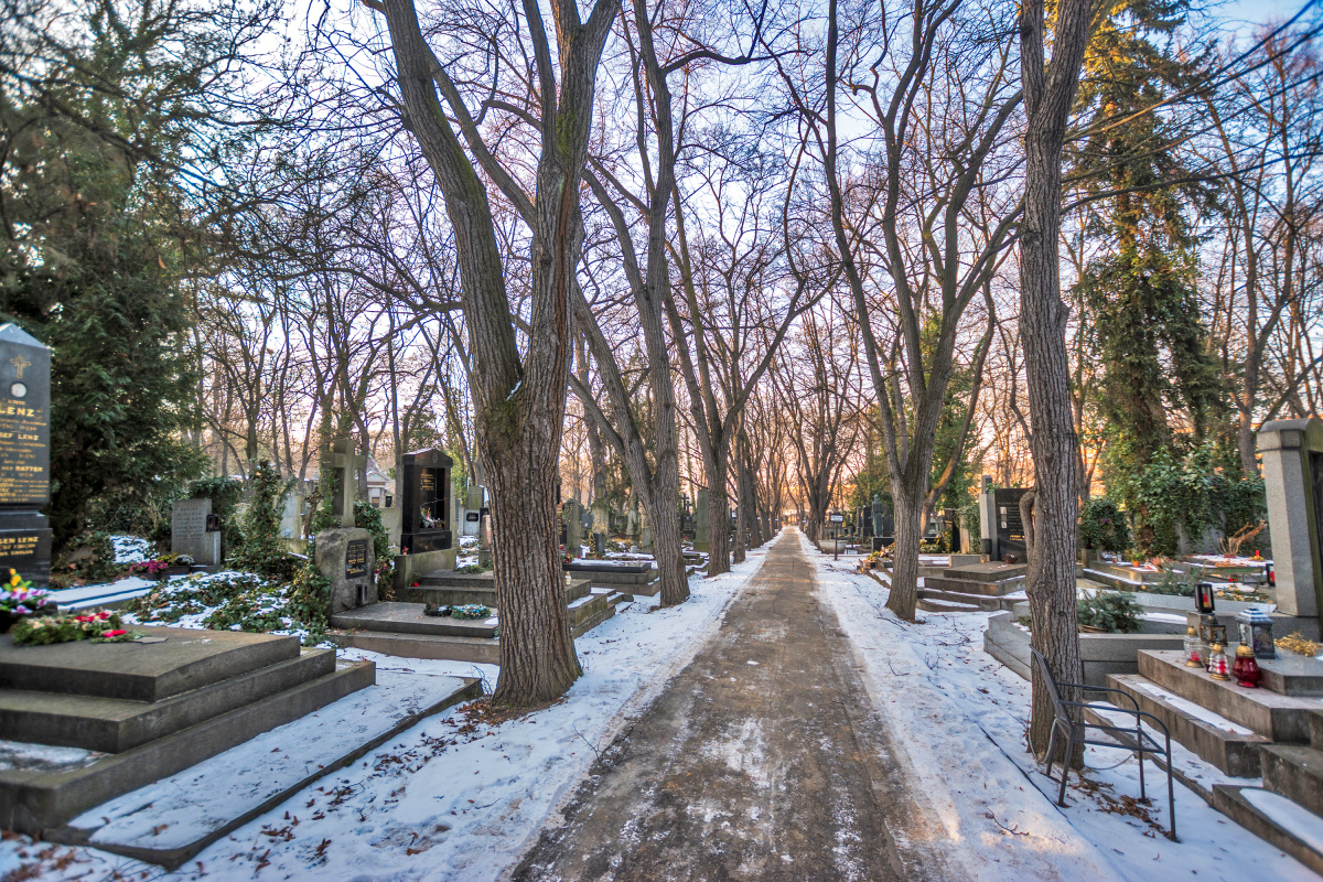 Sunset on the Cemetery Path