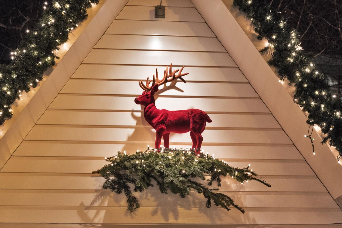 Red Velvet Deer