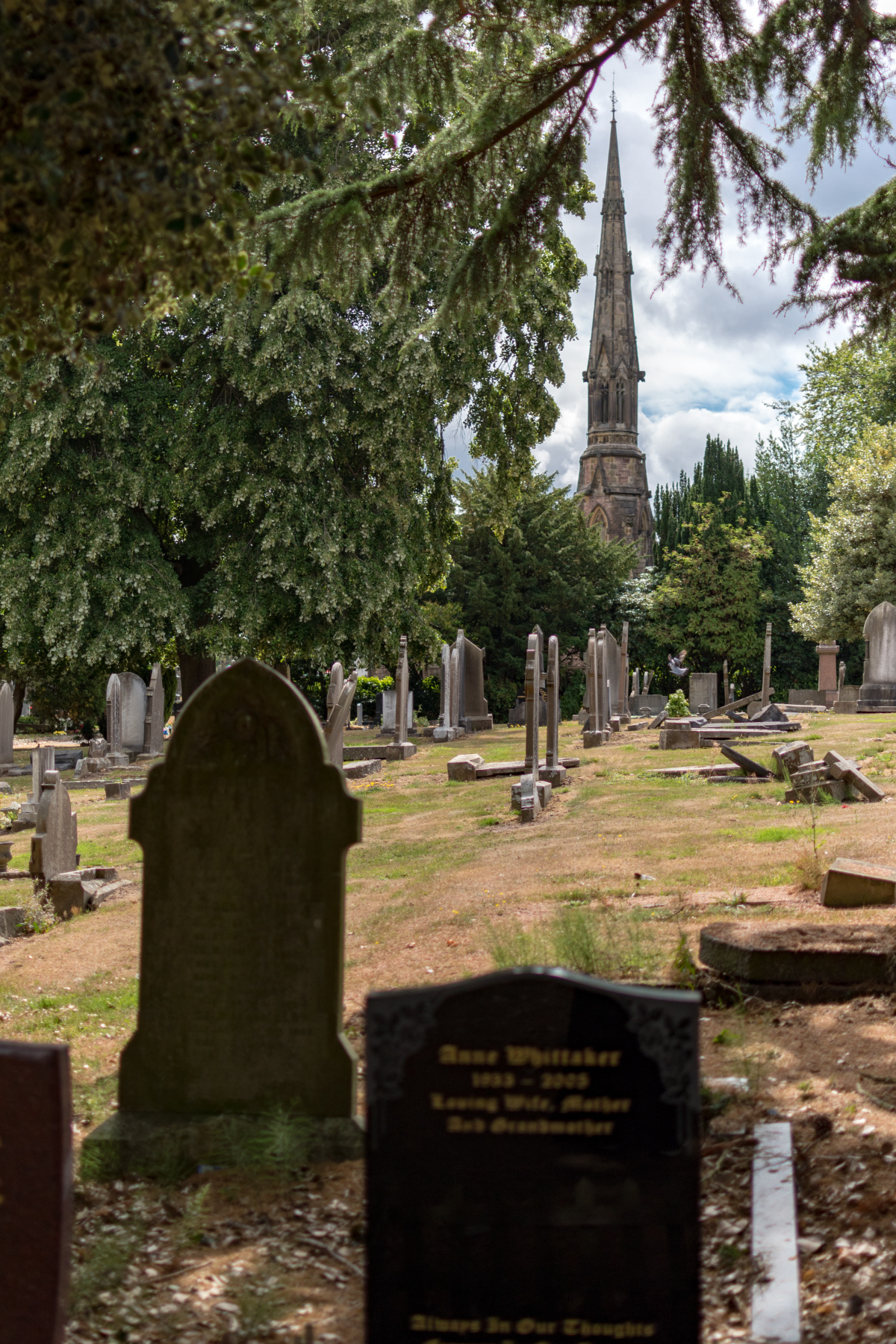 Summertime in the Macclesfield Cemetery