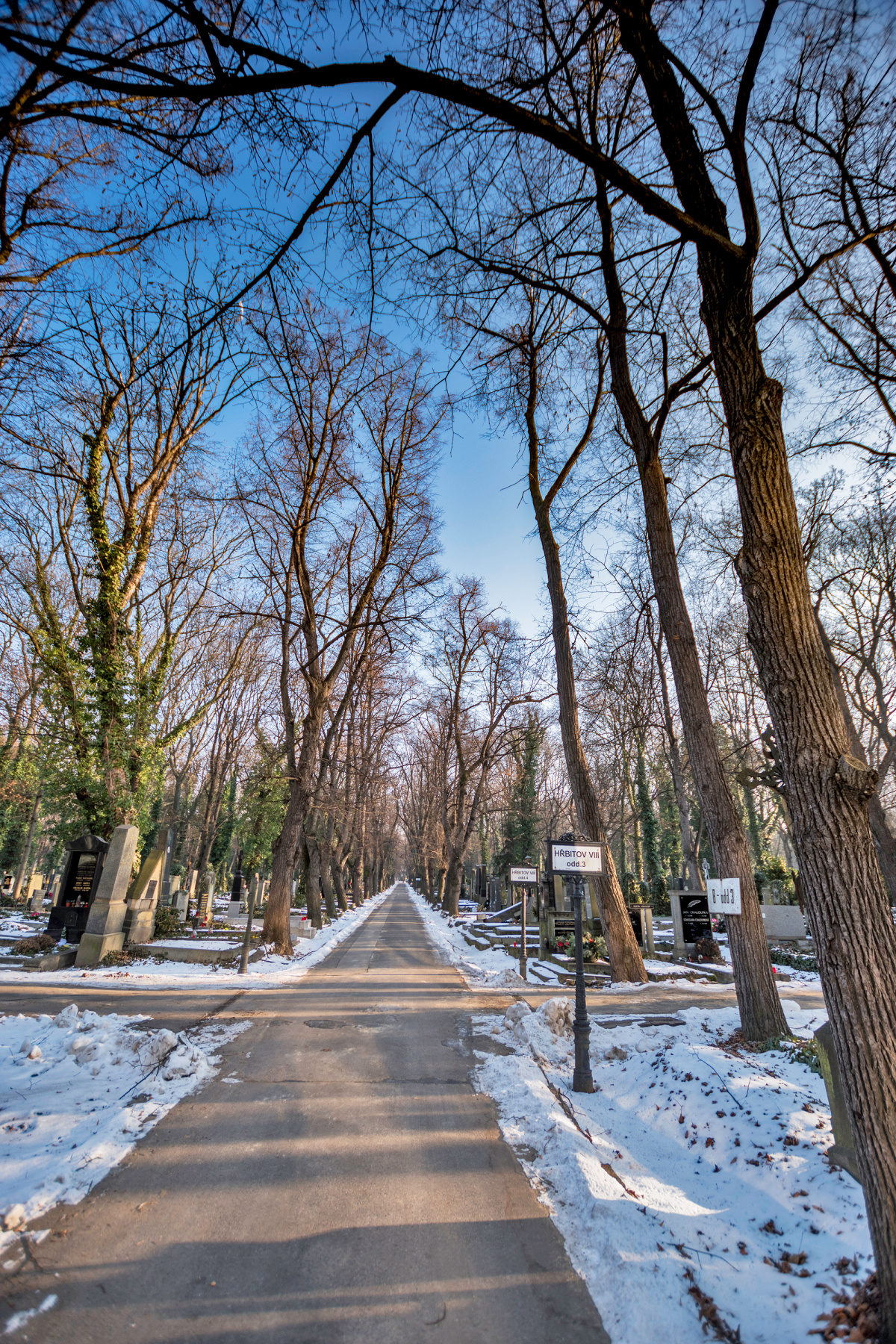 Cemetery Crossroads