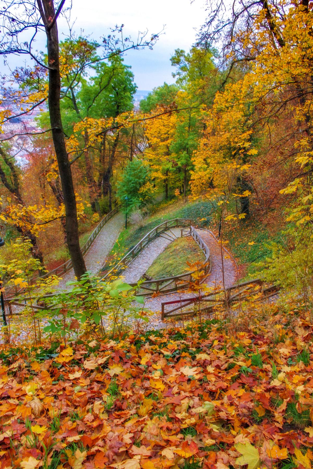 Winding Autumn